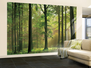autumn-forest-huge-wall-mural-art-print-poster